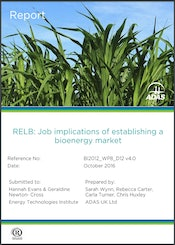 ADAS - RELB: Job implications of establishing a bioenergy market